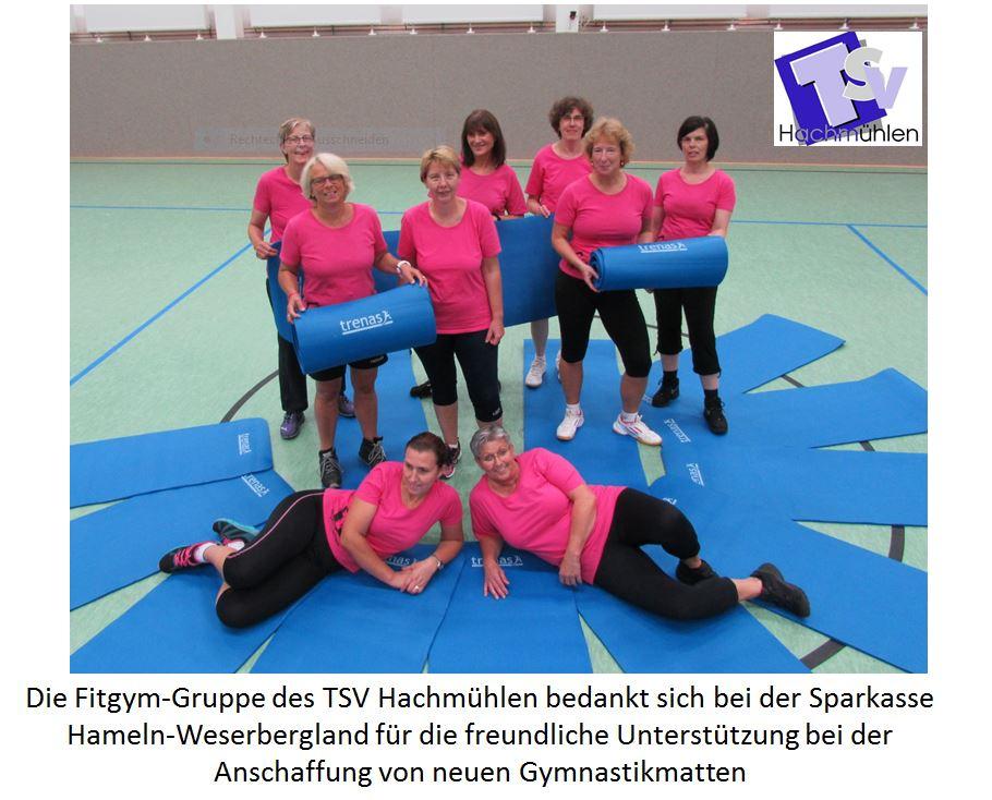 https://tsv-hachmuehlen.de/wp-content/uploads/2020/02/2016_Fitgym_Neue-Matten.jpg